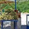Road to Kruja - Honey