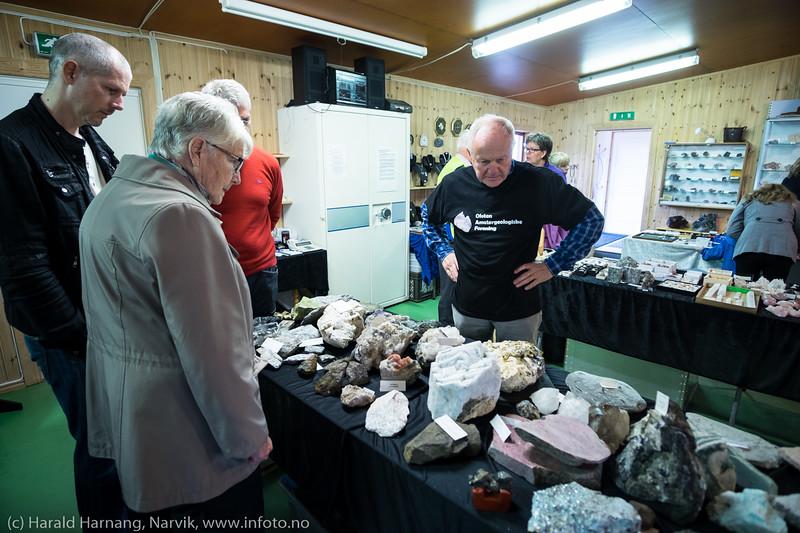 Geologiens dag 2016