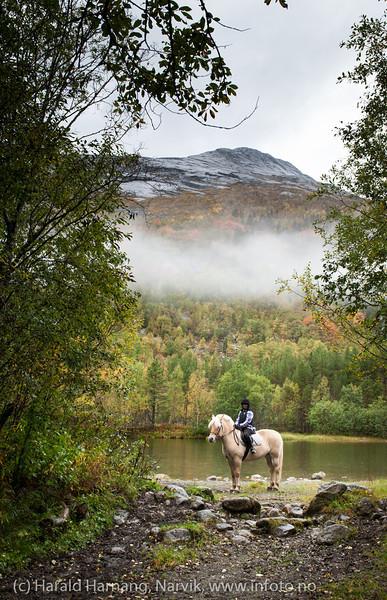 """Anisha på """"Dina"""". Skjomdalen, 15. sept 2013. I bakgrunnen Gulliktind. Elva Skjoma renner stille forbi."""