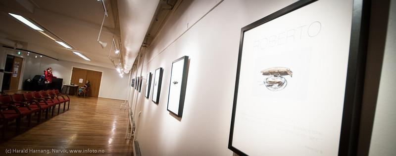 Kunstutstilling i Folkets hus, okt 2012