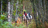"Kristine og Anisha rir i skogsløypa på ""Taterholmen"" ved Narvik rideskole, Skjomdalen, 15. september 2013."