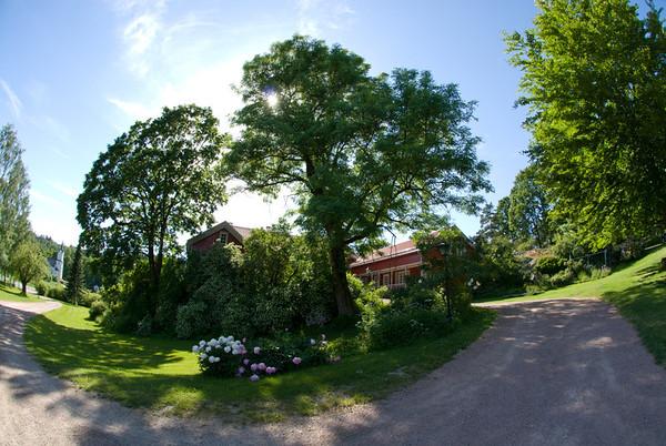 Holm Gård sommer 15.06.07