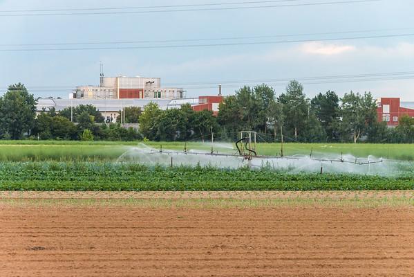 Felder bei Weiterstadt