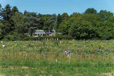 Saisongarten Hofgut Oberfeld