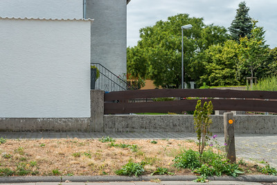 Riedstadt  (Foto: Christoph Rau)