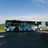 crau20120616-061