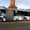 crau20120221-087