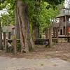 crau20110630-222