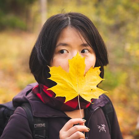 Mandatory Autumn Leaf