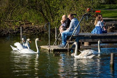 Uster am Greifensee by AlexLoertscherFoto ch 150421C68