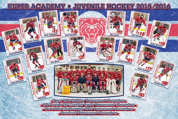 2016 Juvie Hockey