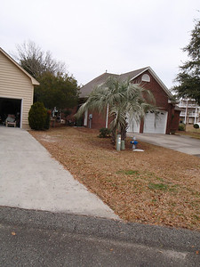 Right side of driveway...neighbor's palm separating property.  Bush on corner same as one on other corner of house.