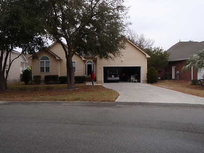 Front view:  Live Oaks on left side of driveway