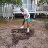 Dennis digging the hole for the new magnolia on Saturday