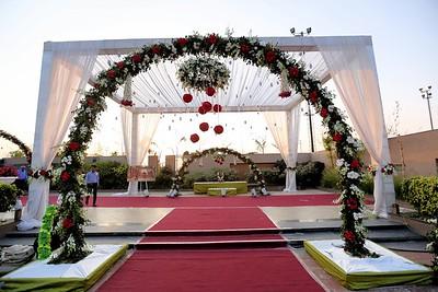 wedding  0004