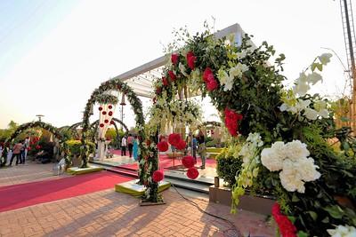 wedding  0006
