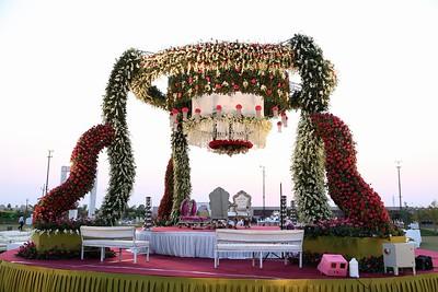 wedding  0019