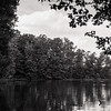 Burke Lake. RZ67 HP5. June 2017.