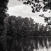 Burke Lake. RZ67 HP5. June 2017.