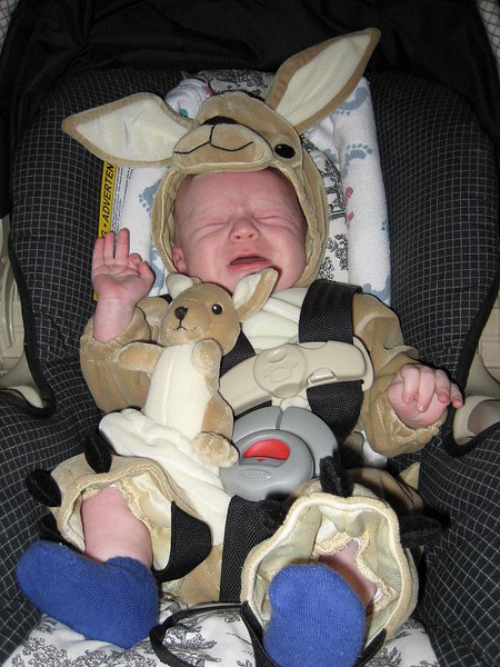 Kyle's first Halloween. He's one upset little kangaroo.