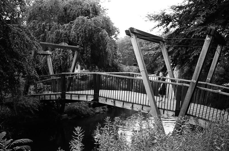 Neat bridge! Aug 2016. Kodak Tri-X.