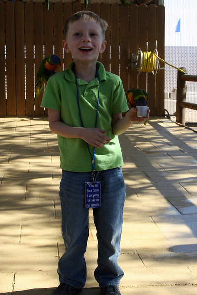 Kyle feeding Rainbow Lorikeets outside Tucson, Az, Nov 2012.