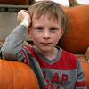 Cox Farms Pumpkin Patch<br /> Manassas, VA. 2013