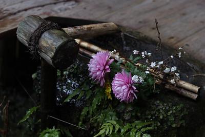 Winter Zen Flowers Arrangement
