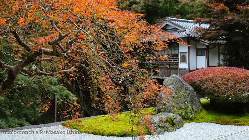 Kyoto Kochi-dani Amida-ji temple 古知谷 阿弥陀寺