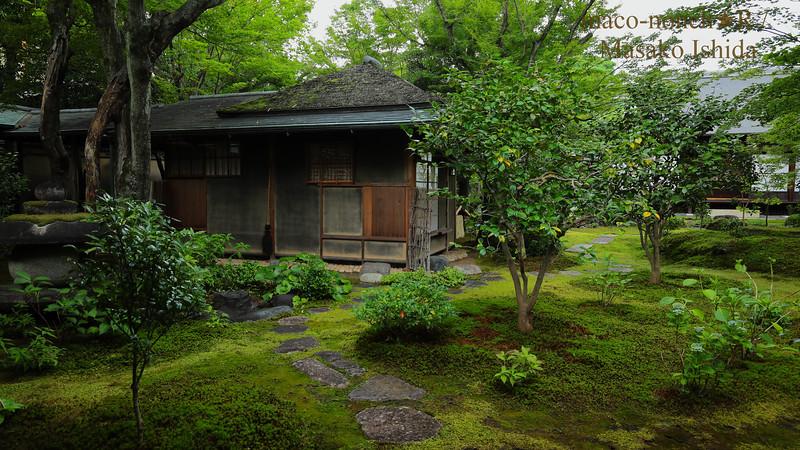 Kyoto Daitokuji  Obai-in 大徳寺黄梅院