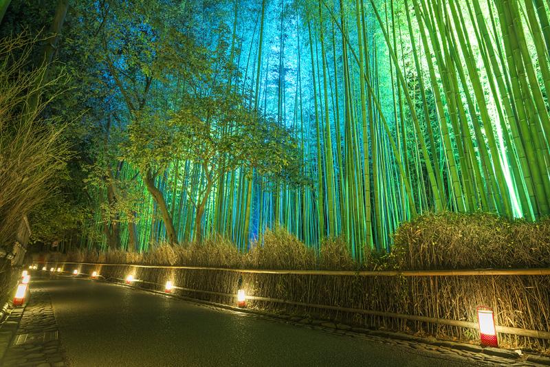 Arashiyama Bamboo Grove during Arashiyama Hanatouro Festival (mid-December). Editorial credit: Nishitap / Shutterstock.com