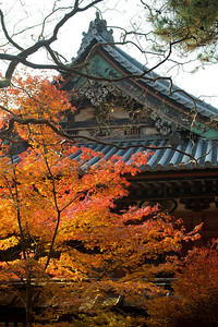Bishamon-do Temple, Detail of Roof in Autumn