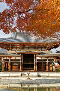Byodo-in Phoenix Hall framed with red and orange Momiji (autumn foliage)  Japanese World Cultural Heritage in Uji City, south of Kyoto