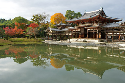 Byodo-in Temple, wide Shot with Autumn Foliage  Japanese World Cultural Heritage Building reflecting in Water