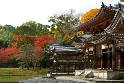 Byodo-in main Hall from Side with Autumn Foliage