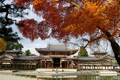 Byodo-in Temple framed with red and orange Momiji (autumn foliage)