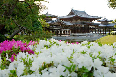 Byodo-in Temple with Azalea in Front  Japanese World Cultural Heritage in Uji City near Kyoto in May