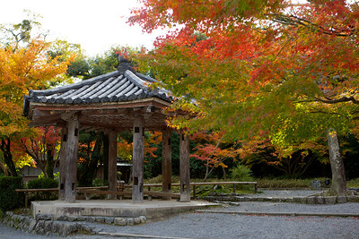 Byodo-in Temple, Rest Place with autumn foliage