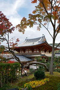 Byodo-in Temple from back with autumn foliage  Japanese World Cultural Heritage in Autumn