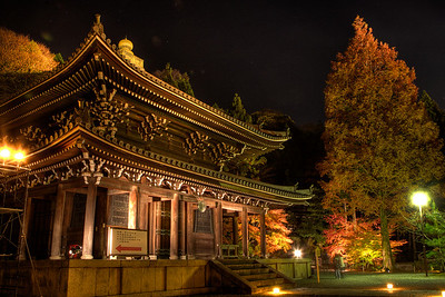 Temple Building at Night with Autunm Foliage