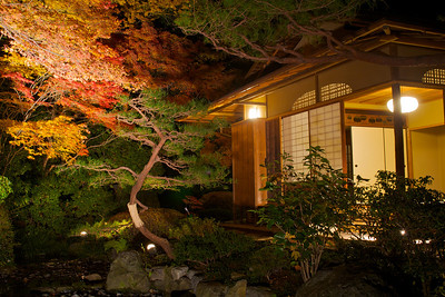 Japanese Teahouse at Night  Autumn Foliage at Kyoto Temple