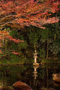Stone Lantern reflecting in Pond with Autumn Foliage  At Chion-in Temple at Night