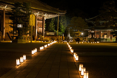 Evening Light up at Chion-in Temple, Kyoto