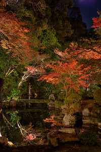 Autumn Foliage reflecting in a Pond like a Mirror  Japanese Garden at Chion-in Temple in Kyoto