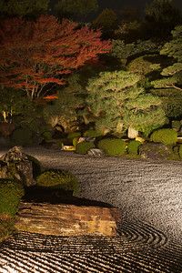 Modern Style Garden at Chion-in Temple, Kyoto  Light up in Autumn