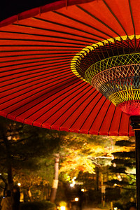 Hudge Umbrella decorated at Night with Autumn Foliage  Illuminated at Chion-in Temple Garden