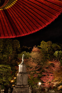 Buddhism Statue under Red Umbrella with Light up.  Garden of Chion-ji Monastery in the Dark with Autunm Foliage