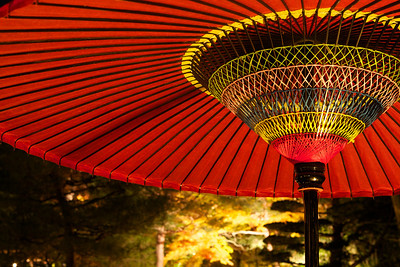 Inside of decorative Umbrella with Autunm Foliage  Detail in Red at Chion-in Temple, Kyoto, at Night