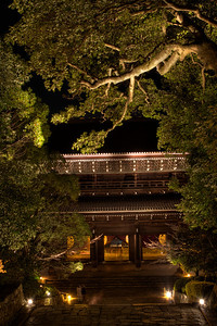 Chion-in Monastery Temple Gate at Night  Illuminated with Pine Tree in the Foreground