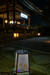 Lanterns decorated in Front of a Garden  Temple Building at Chion-in Monastery, Kyoto, at Night